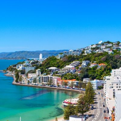 Wellington Round the Bays 2020
