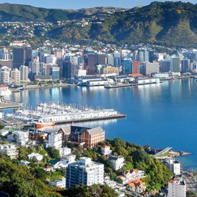Wellington Marathon 2020